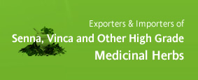 Exporters and Importers of Senna, Vinca and Other High Grade Medicinal Herbs